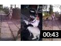 畜牧养殖场 (33播放)