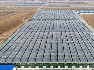 广州畜牧及饲料工业博览会