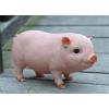 创意仿真小猪树脂摆件可爱动物户外花园庭院装饰礼物客厅电视柜
