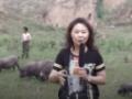 怀来古农庄园藏香猪生态养殖基地 (3播放)
